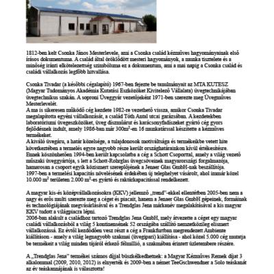 The Csonka és Fiai Ltd. is 30 years old (german)